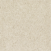 Dixie Group Trusoft Stainmaster Trusoft Gallery Cream/Beige/Almond Textured Indoor Carpet