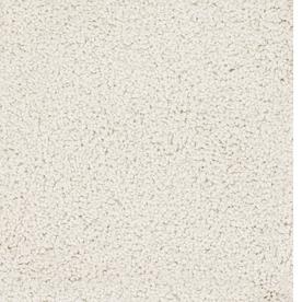 Dixie Group TruSoft Pomadour Cream/Beige/Almond Textured Indoor Carpet