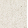 Dixie Group TruSoft TruSoft Gallery Cream Textured Indoor Carpet