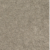 Dixie Group TruSoft Pomadour Brown/Tan Textured Indoor Carpet