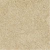 Dixie Group Trusoft Pompadour Yellow/Gold Textured Indoor Carpet