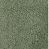 Dixie Group Trusoft Pompadour Green Textured Indoor Carpet