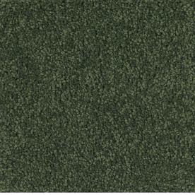 Dixie Group TruSoft Pomadour Green Textured Indoor Carpet