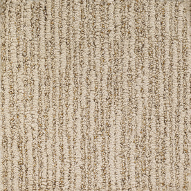 Dixie Group Trusoft Sequoia Grove Brown Fashion Forward Indoor Carpet