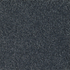 Dixie Group TruSoft TruSoft Gallery Gray Textured Indoor Carpet