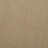 Dixie Group TruSoft Levity- Feature Buy Brown/Tan Textured Indoor Carpet