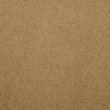 Dixie Group Trusoft Levity Brown/Tan Textured Indoor Carpet