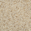 Dixie Group TruSoft Levity- Feature Buy Cream/Beige/Almond Textured Indoor Carpet