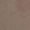 Dixie Group TruSoft Vellore Passion Textured Indoor Carpet