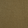 Dixie Group TruSoft Gallery Timber Textured Indoor Carpet