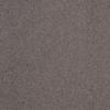 Dixie Group TruSoft Gallery Cavern Textured Indoor Carpet