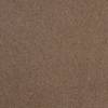 Dixie Group TruSoft Gallery Zephyr Textured Indoor Carpet