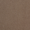 Dixie Group TruSoft Gallery Slicker Textured Indoor Carpet