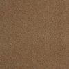 Dixie Group TruSoft Gallery String Textured Indoor Carpet