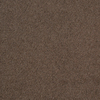 Dixie Group TruSoft Vellore Wisper Textured Indoor Carpet
