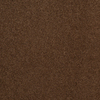 Dixie Group TruSoft Gallery Bramble Textured Indoor Carpet