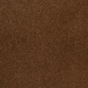 Dixie Group TruSoft Vellore Bellflower Textured Indoor Carpet