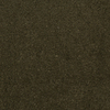 Dixie Group TruSoft Gallery Starlight Textured Indoor Carpet