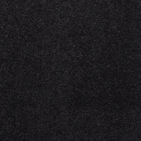 Dixie Group TruSoft Vellore Newport Textured Indoor Carpet