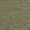 Dixie Group TruSoft Gallery Fizz Textured Indoor Carpet