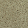 Dixie Group TruSoft Gallery Juniper Textured Indoor Carpet