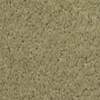 Dixie Group TruSoft Larissa Bonnie Textured Indoor Carpet