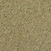 Dixie Group TruSoft Gallery Basket Textured Indoor Carpet