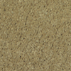 Dixie Group TruSoft Gallery Shutter Textured Indoor Carpet