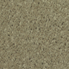 Dixie Group TruSoft Larissa Swirl Cut Pile Indoor Carpet