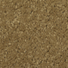 Dixie Group TruSoft Gallery Elegant Textured Indoor Carpet