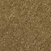 Dixie Group TruSoft Larissa Elegant Textured Indoor Carpet