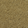 Dixie Group TruSoft Gallery North Sea Textured Indoor Carpet