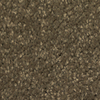 Dixie Group TruSoft Gallery Forbidden Textured Indoor Carpet