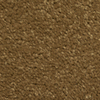 Dixie Group TruSoft Gallery Milano Textured Indoor Carpet