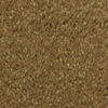 Dixie Group TruSoft Larissa Picasso Textured Indoor Carpet