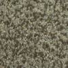 Dixie Group TruSoft Larissa Imari Textured Indoor Carpet