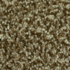 Dixie Group TruSoft Gallery Treaty Textured Indoor Carpet