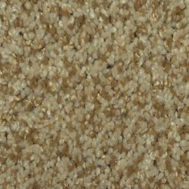 Dixie Group TruSoft Gallery Cupid Textured Indoor Carpet