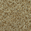 Dixie Group TruSoft Larissa Cupid Textured Indoor Carpet