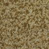 Dixie Group TruSoft Larissa Toledo Textured Indoor Carpet
