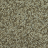 Dixie Group TruSoft Gallery Malibu Textured Indoor Carpet