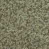 Dixie Group TruSoft Larissa Malibu Textured Indoor Carpet