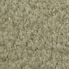 Dixie Group TruSoft Gallery Lapis Textured Indoor Carpet