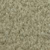 Dixie Group TruSoft Larissa Lapis Textured Indoor Carpet