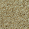Dixie Group TruSoft Gallery Ballada Textured Indoor Carpet