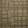 STAINMASTER PetProtect Kingsland Biscay Cut and Loop Indoor Carpet
