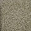 STAINMASTER TruSoft Clearman Estates Denali Frieze Indoor Carpet
