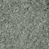 STAINMASTER TruSoft Clearman Estates Zumba Frieze Indoor Carpet