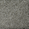 STAINMASTER TruSoft Clearman Estates Classico Frieze Indoor Carpet