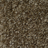 STAINMASTER TruSoft Clearman Estates Montage Frieze Indoor Carpet